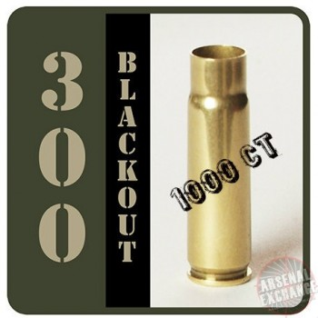 For Sale 300 AAC BLACKOUT BRASS (1000CT) FREE SHIPPING! $135.00 MI 48178