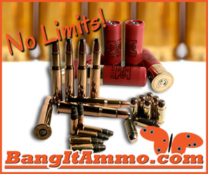 BangItAmmo.com No Limits Ammunition