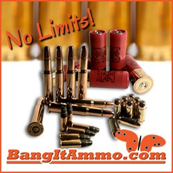 BangItAmmo.com Greenville SC 29615